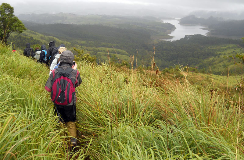 Trek to the Anaerangal Lake at Munnar