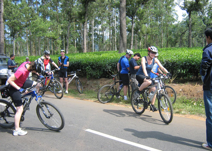 Cycling through Tea Gardens at Munnar