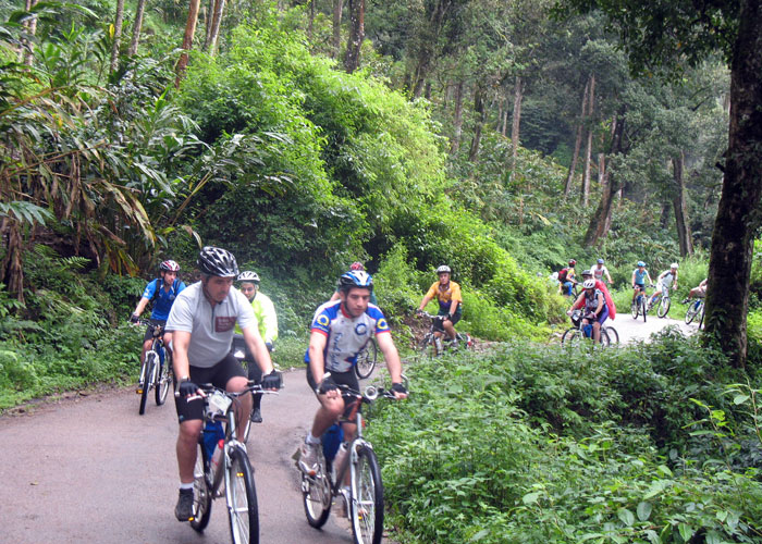 Cycling through scenic Munnar